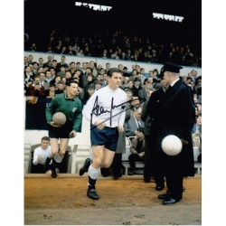 Alan Mullery autograph (Spurs)