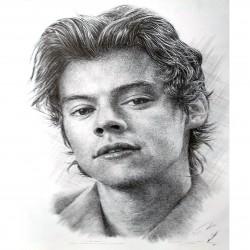 Jonathan Wood pencil drawing - Harry Styles