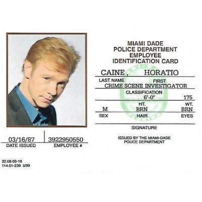 David Caruso Character ID Card (CSI: Miami)