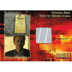 David Caruso Costume Card (CSI: Miami)