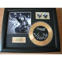 Angus Young Gold Vinyl and Plectrum Display (Preprint) - AC/DC