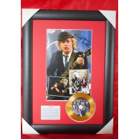 Angus Young Gold Vinyl Display 2 (Preprint) - AC/DC
