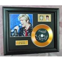 David Bowie Gold Vinyl and Plectrum Display (Preprint) - 1