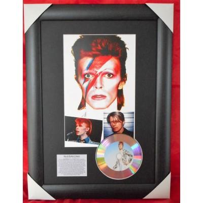 David Bowie Platinum Vinyl Display