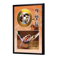 Eddie Cochran Gold Vinyl Display (Preprint)