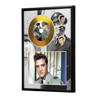 Elvis Presley Gold Vinyl Display (Preprint) - 2